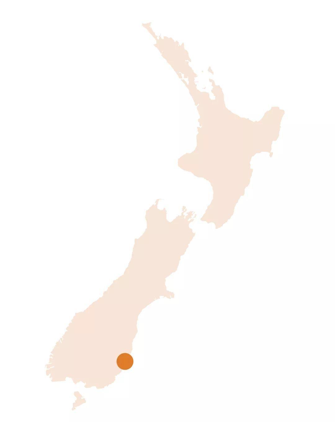 新西兰周末集市,体验一站式吃喝玩乐