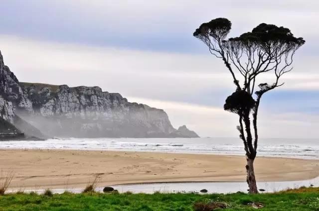 夏   在新西兰,你与大海的距离从不会遥远