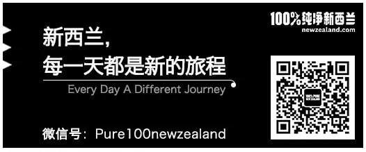 必读   嘘,告诉你一个别人不知道的新西兰